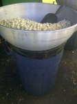 Freshly-made kettle corn.